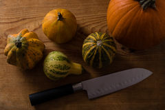 Variety of decorative pumpkins Stock Images