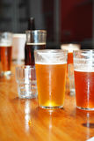 Variety of different beers. Glasses of light and dark beer on a pub background Stock Photography