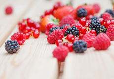 Variety of different berries Royalty Free Stock Photography