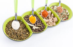 Variety of different herbs close-ups Royalty Free Stock Photography