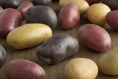 Variety of different potatoes Royalty Free Stock Photos