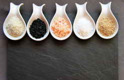 Variety of Different Sea Salts Stock Image
