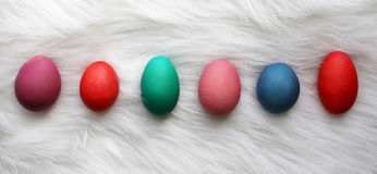 Variety of Different Size and Color Easter Eggs Lined up on Whit Stock Photos