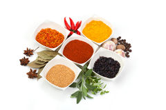 Variety of different spices Stock Image