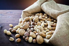 Variety of dried fruit in the sack Stock Images