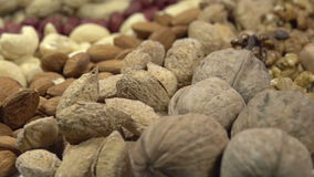 Variety of Dried Fruits and Nuts stock footage