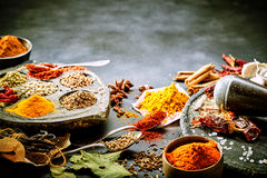 Variety of dried spices for Asian cooking. Together with fresh garlic, bay leaves and vanilla pods and a pestle and mortar to prepare the chili peppers on a Stock Image
