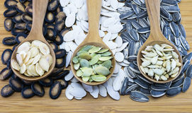 Variety of edible seeds in wood spoon on wood background Royalty Free Stock Photography