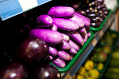 Variety of eggplants on display in grocery store Royalty Free Stock Image