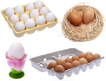 Variety of Eggs Stock Photos