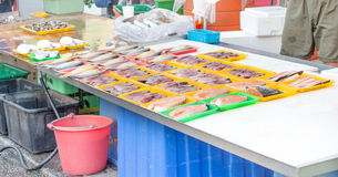 Variety of fish. In a market stock photography