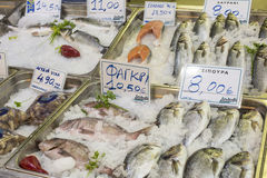 Variety of fish and seafood on local greece market. Stock Images