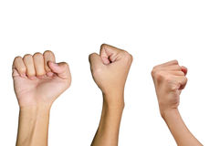 Variety of Fist Hands Stock Images