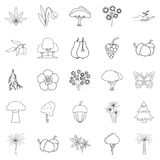 Variety of flora icons set, outline style. Variety of flora icons set. Outline set of 25 variety of flora vector icons for web isolated on white background Royalty Free Stock Images