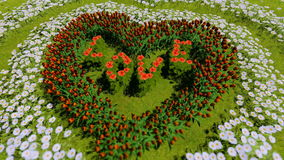 A variety of flowers in the shape of a heart on a green field, as a symbol of Valentine`s Day and love. stock footage