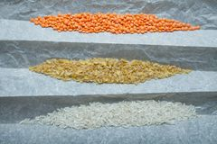 A variety of food from natural organic grains: rice, lentils, bulgur. Vertically royalty free stock image