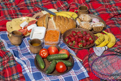 Variety of food for a picnic lies on the blanket : red tomato, green cucumber, strawberry, banana, carrot, cheese, bread, cupcakes. And juice in clay mugs Royalty Free Stock Photo
