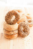 Variety of fresh bagels Stock Images