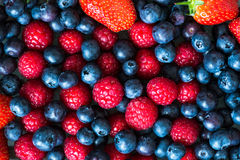 Variety of Fresh Berries such as Blueberries, Raspberries and St Stock Image