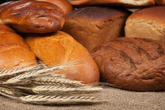 Variety of fresh bread with ears of rye Royalty Free Stock Photography