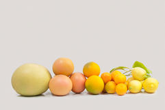 Variety of fresh citrus fruits Royalty Free Stock Photo