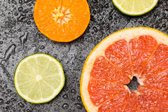 Variety of fresh citrus fruits slices on wet table Royalty Free Stock Photo