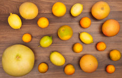 Variety of fresh citrus fruits Stock Images