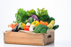 Variety of fresh colorful vegetables. Crate of raw fresh vegetables from the farmers market, assortment of corn, peppers, broccoli, mushrooms, beets, cabbage Royalty Free Stock Photography