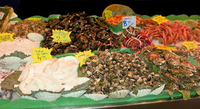 Variety of fresh fish in the market Stock Photo