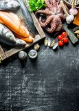 A variety of fresh fish, octopus and oysters. On dark rustic background royalty free stock photo
