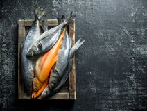 A variety of fresh fish on a tray. On dark rustic background stock image