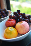 Variety of Fresh Fruits Stock Photography