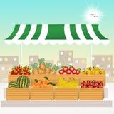 Variety of fresh fruits Stock Image