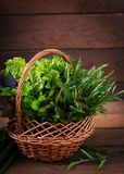 Variety fresh organic herbs Stock Photos