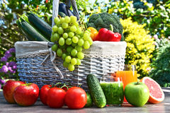 Variety of fresh organic vegetables and fruits in the garden Royalty Free Stock Image