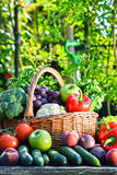Variety of fresh organic vegetables and fruits in the garden Stock Photo