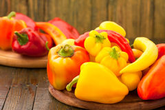Variety of fresh peppers Royalty Free Stock Image