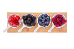 Variety of fresh ripe autumn berries Stock Image