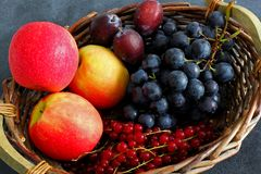 Choice of summer fruits in market basket on dark board Royalty Free Stock Photo