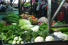 Variety of fresh vegetable at the vegetable stall in fresh marke Stock Photography