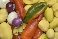 Variety of fresh vegetables Stock Images