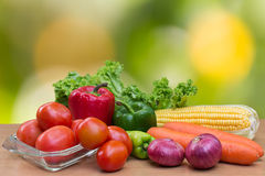 Variety of fresh vegetables on wood table. Tomatoes on dish and lettuce, corn, carrot, onion and green paprika on wood table Royalty Free Stock Images