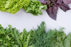 Variety of fresh vgetables and copy space. Frame from fresh organic herbs and space text. Healthy eating and diet Stock Photos