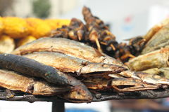 A variety of fried fish. A variety of grilled fish. bokeh. soft focus royalty free stock image