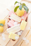 Variety of frozen popsicles Royalty Free Stock Photo