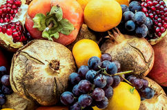 Variety of fruits closeup,pomegranate,grapes,banana,persimmon.. Royalty Free Stock Photos
