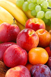 Variety of fruits with drops of water. Composition with fruits with visible drops of water Royalty Free Stock Images
