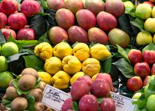 Variety of fruits at the market Stock Photo
