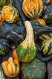 A Variety of Gourds. An assortment of gourds for sale on a market stall stock images