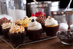 Variety of Gourmet Cupcakes Royalty Free Stock Image